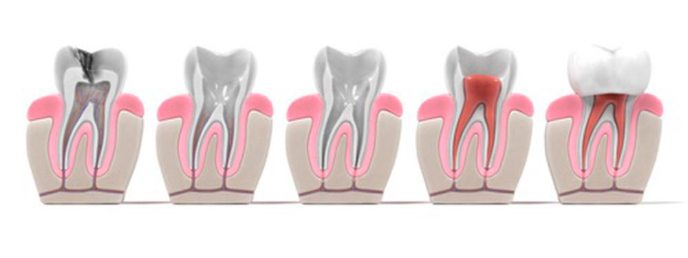 Ortodoncistas y dentistas cerca de Buño